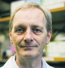 Graham Casey, Ph.D.