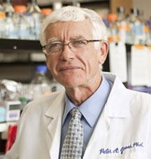 Peter A. Jones, Ph.D., D.Sc.
